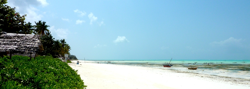 Picture-Perfect Zanzibar