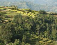 Take your honeymoon in rural Nepal and assist vulnerable women and children