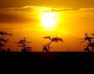 Beautiful sunset in the land of the Masai