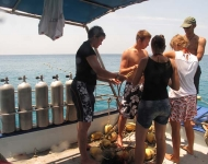 Volunteers check their gear before diving at Thai Island Dream Marine Conservation.